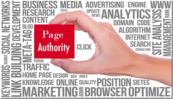 page-authority-info